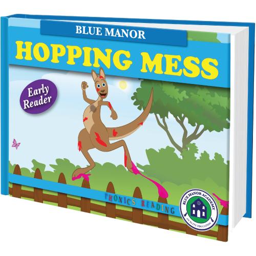 Hopping-Mess
