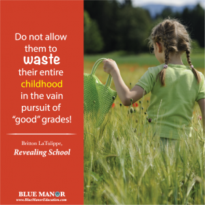 Vain pursuit of good grades - top Educational and Inspirational quotes for homeschoolers